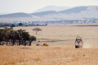 En safari dans le Parc du Serengeti